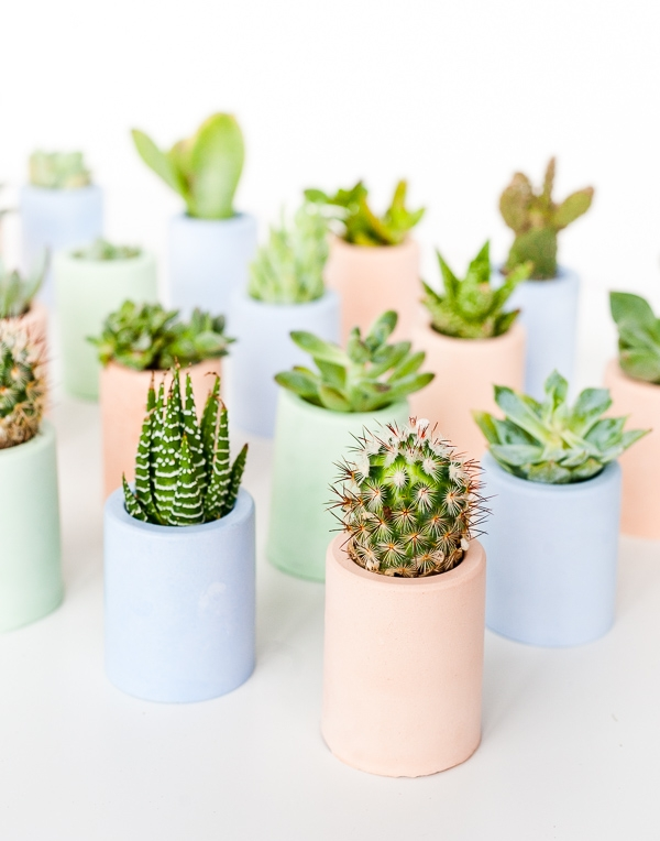 Letters Are Lovely | June/July Around The Web — Color Plaster Mini Planters from Paper & Stitch