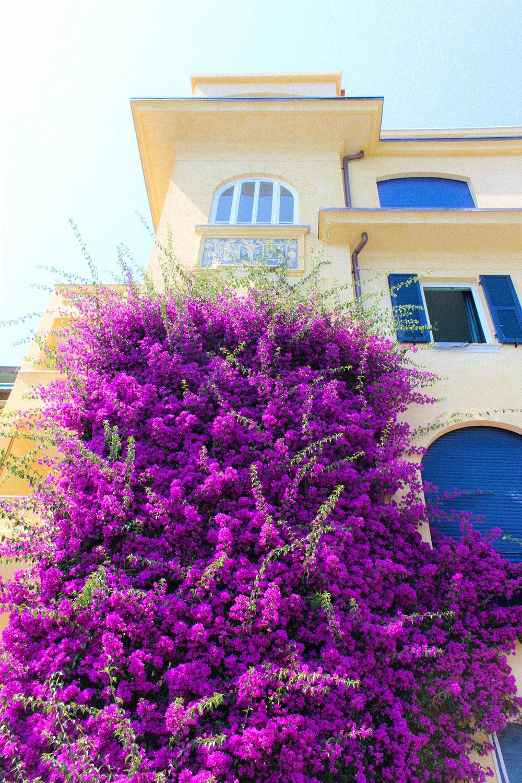 Letters Are Lovely | Monterosso al Mare, Cinque Terre
