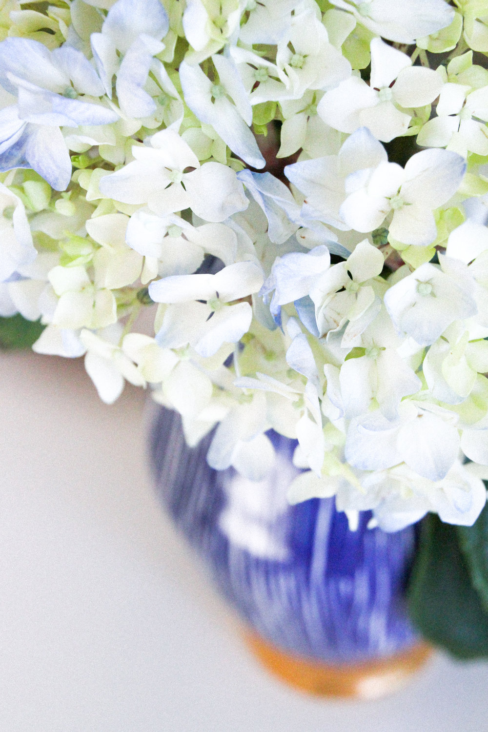 Letters Are Lovely | Hydrangea Studies