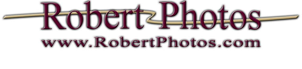 Robert Photo logo color1.png