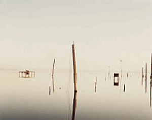 RICHARD MISRACH T.V. ANTENNA, SALTON SEA, CALIFORNIA (1985)