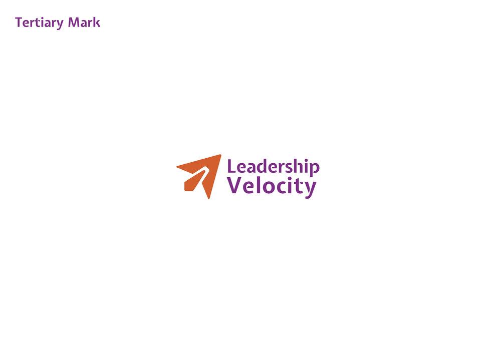 LeadershipVelocity_BrandIdentity_StyleGuide5.jpg