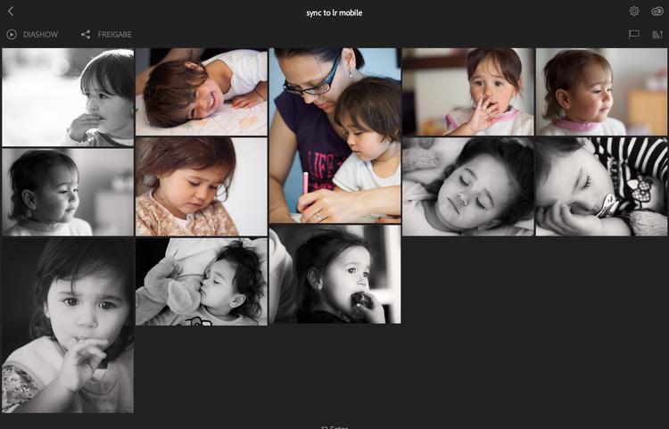 Hier ein Blick in die Webgalerie, die nach dem Synchronisieren der Bilder automatisch zur Verfügung steht (als privates Album). Das Album kann auf Wunsch öffentlich gemacht und mit einem Kunde/Freunden geteilt werden.