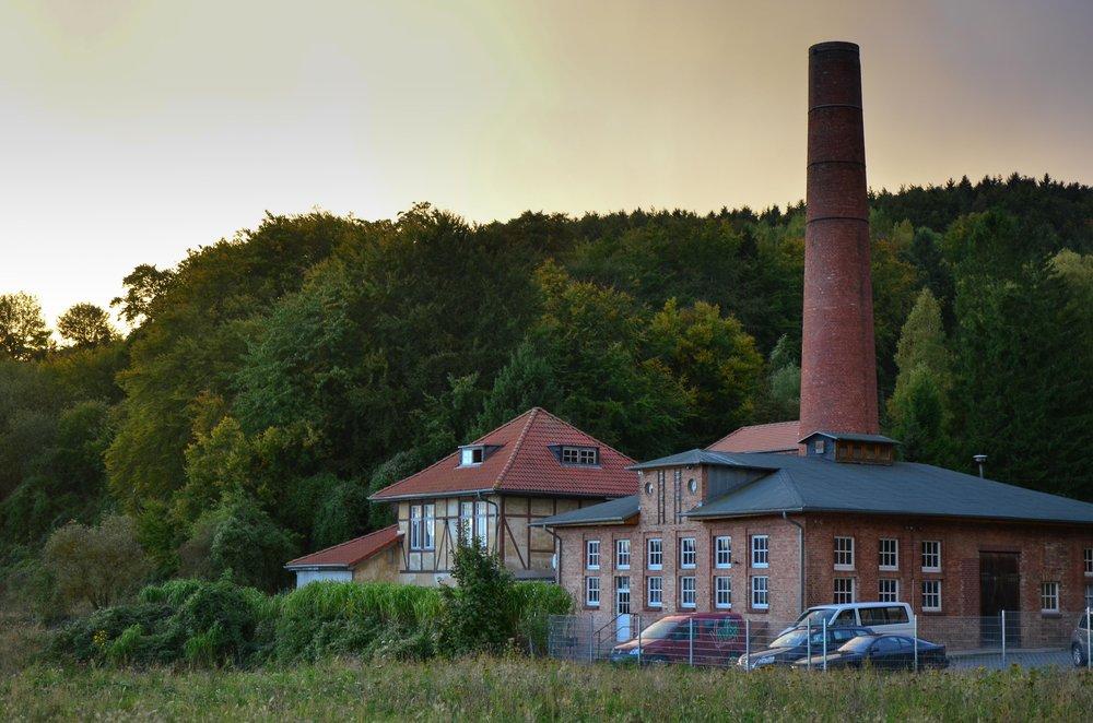 Bergwaldprojekt_Sassnitz_Ruegen_Moor_150dpi_20171014_Credits_CC-BY-SA_Jenni_Ottilie_Keppler-9.jpg