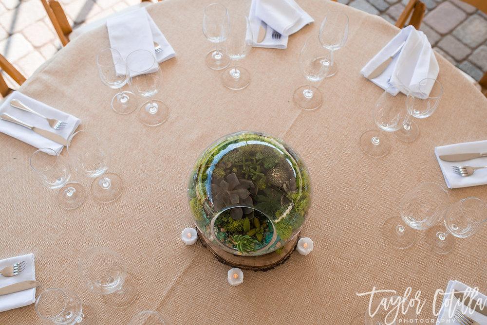 succulent-centerpieces-terrariam-vineayrd-wedding