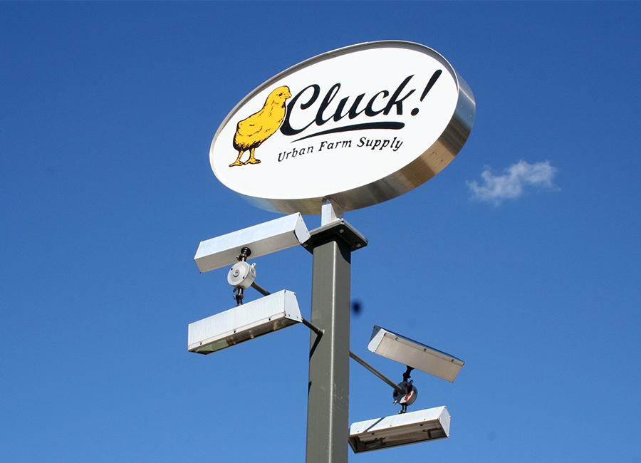 clucky_webready.jpg