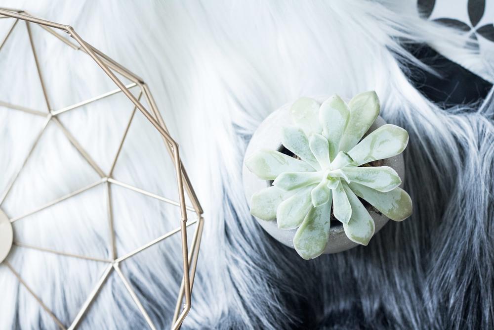 Patricia-Kiteke-Design-Palette-Texture.jpg