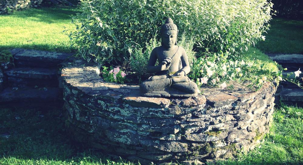 buddha garden.jpg