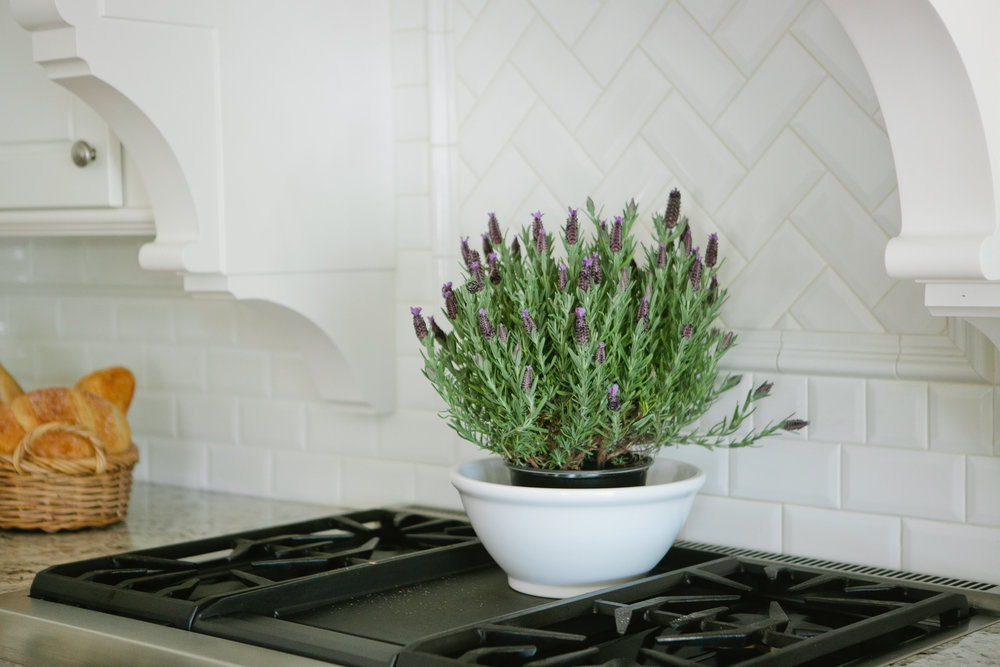 This beautiful bunch of lavender is the perfect fresh accessory for any kitchen. It looks and smells amazing!