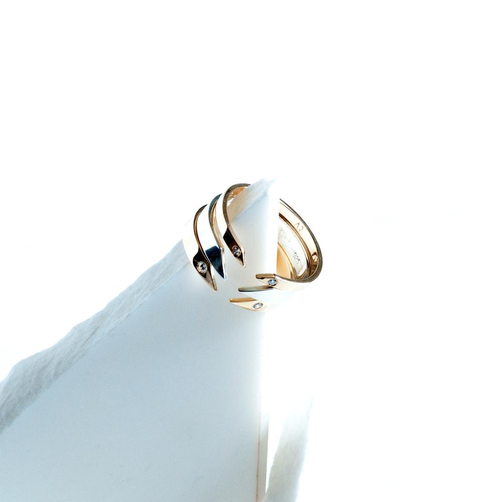 TARA 4779 Void rings