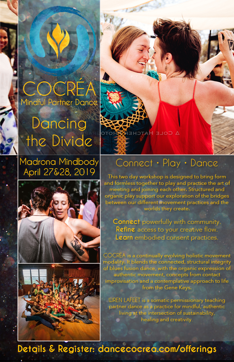 Dancing The Divide_PT_web - Cocréa Mindful Partner Dance.jpg