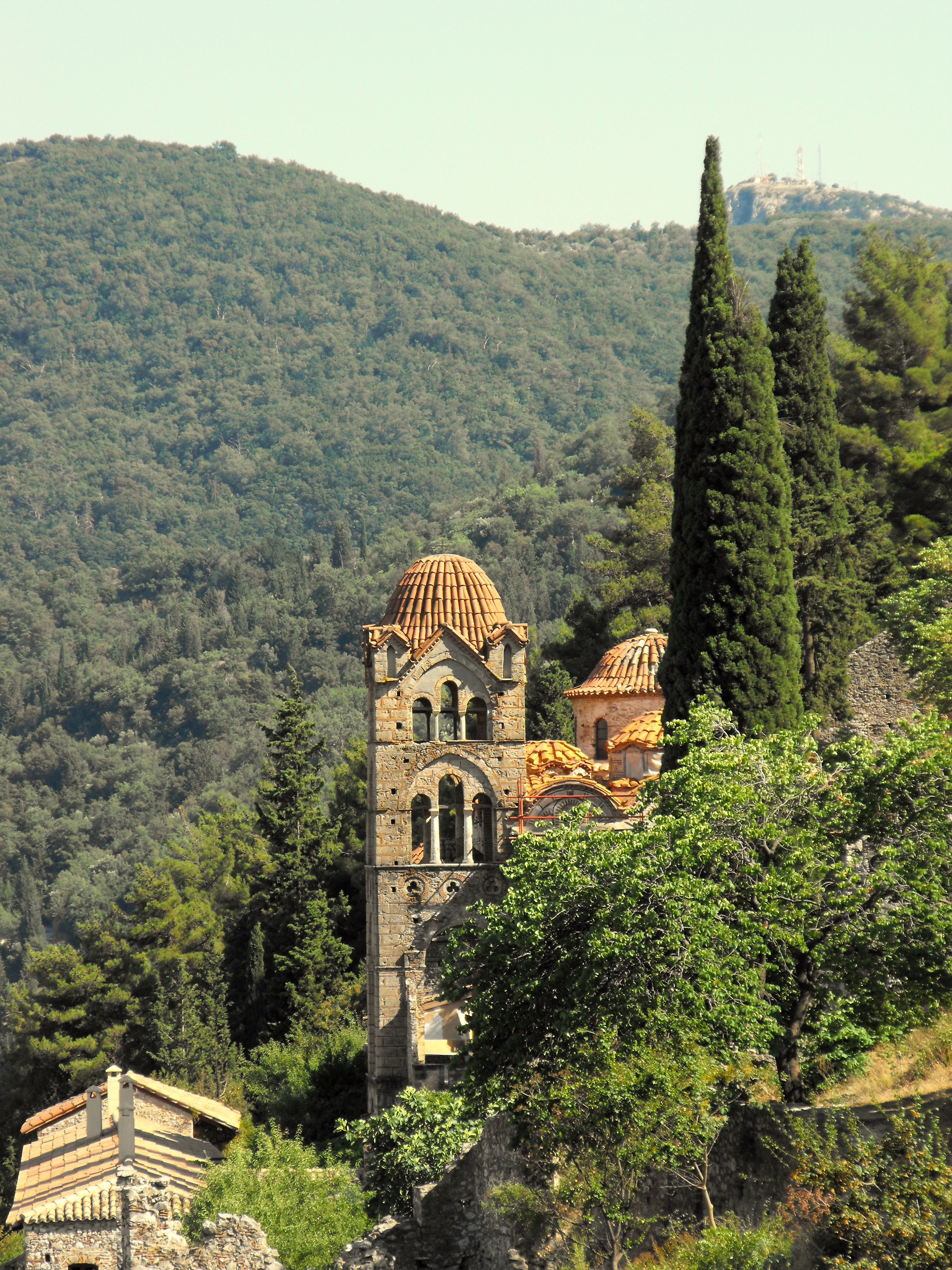 House with cypresses, Mystras Photo: Steve Hollier