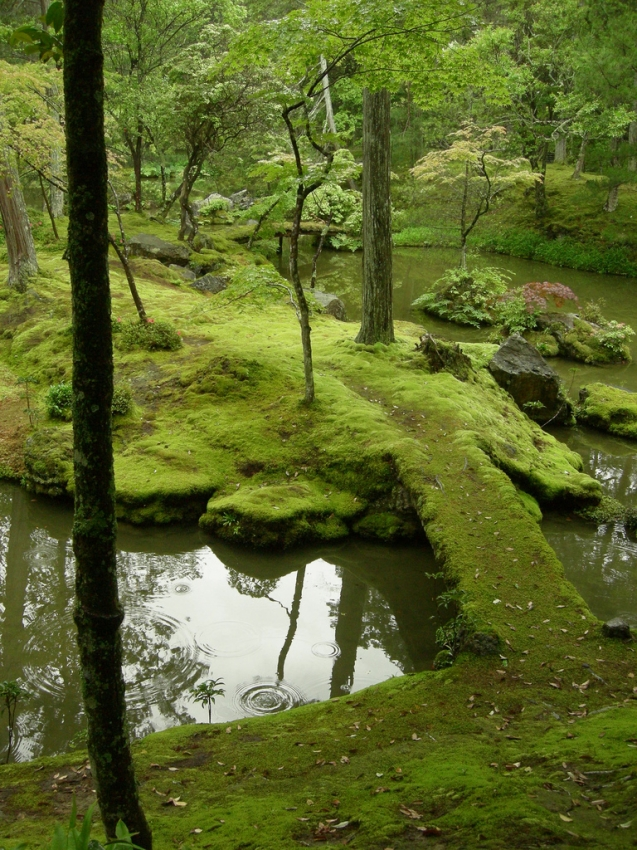 Saiho-ji Temple moss gardens   Photo: kyoto.cityseekr.com