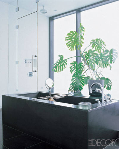 Split-leaf philodendron  Photo: William Waldron, Elle Decor