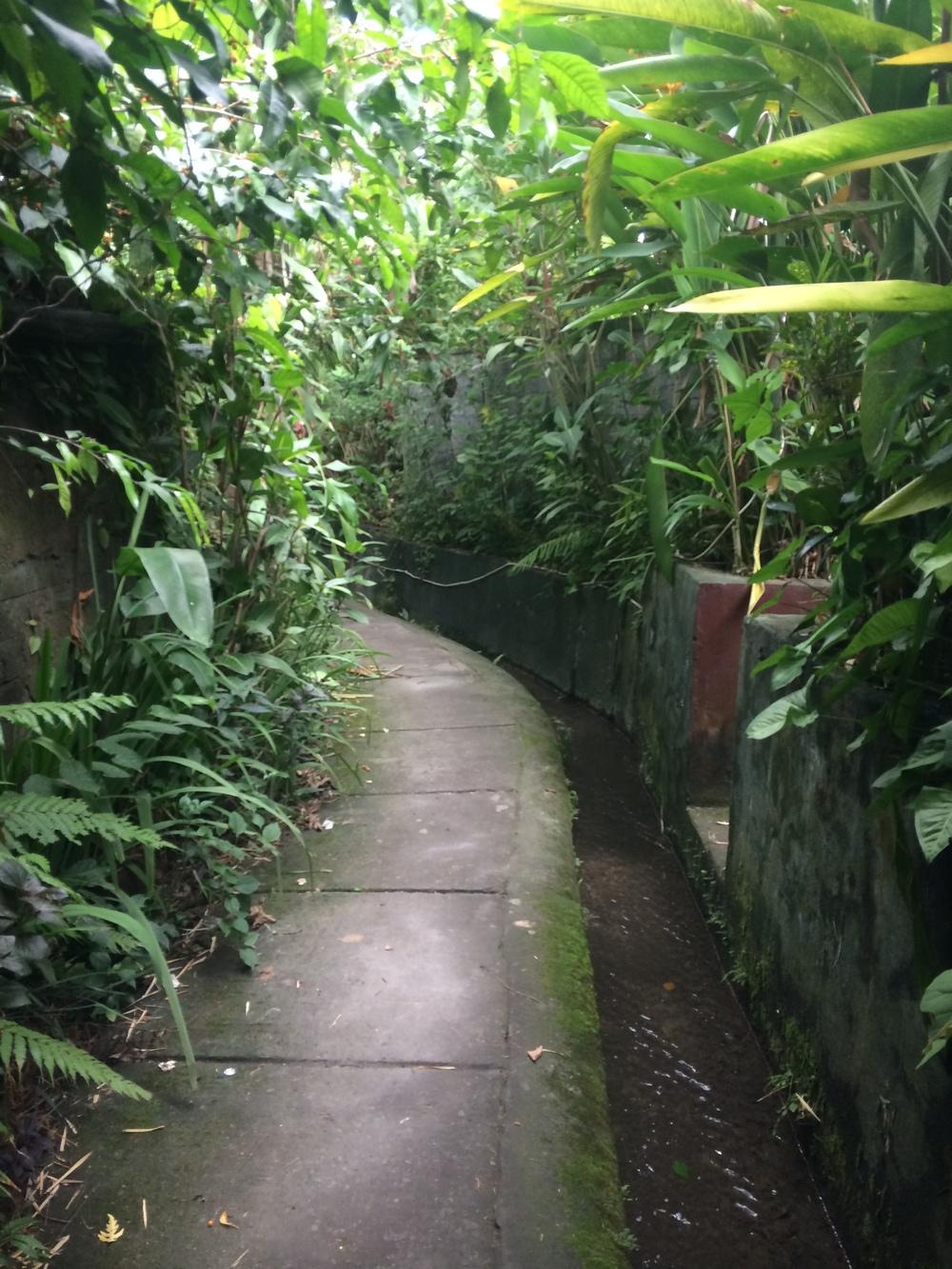 Beautiful little alleys...stop stealing my heart!