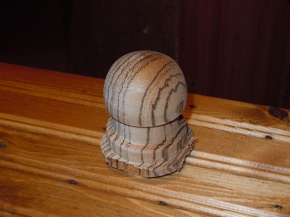 Zebrawood mushroom