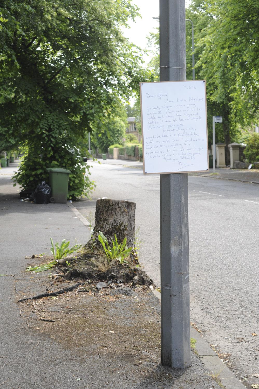 G29  -  21a 2013_07_06_albertdrive_letterstoourneighbours-52_1.jpg