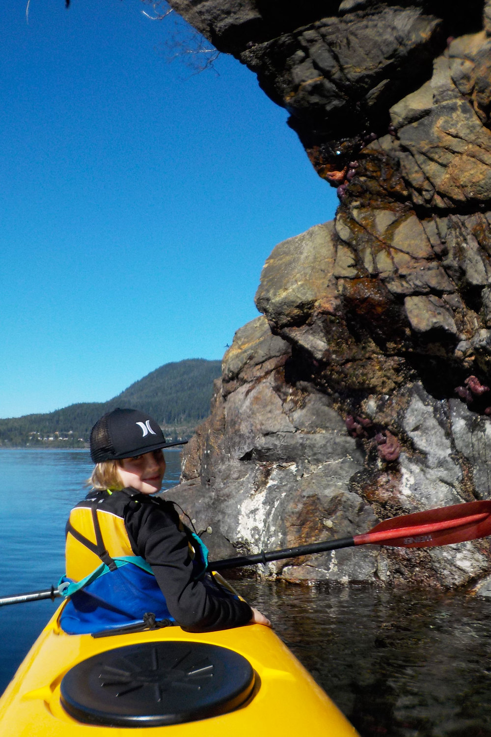 Orcas Cove has an amazing 20 foot intertidal range to explore by kayak.