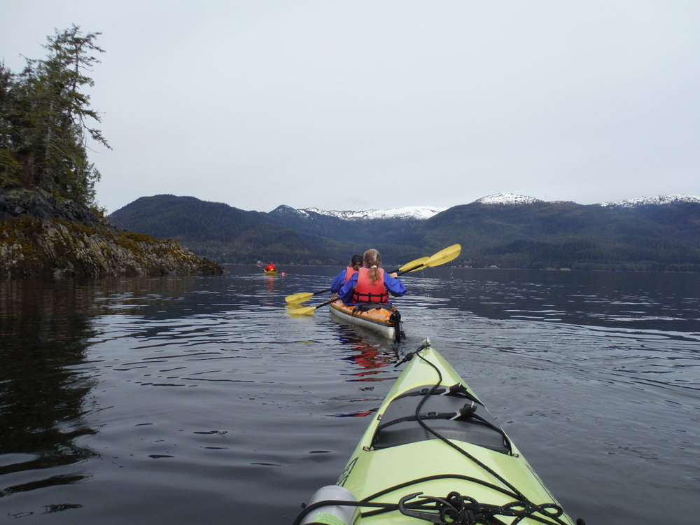 See Alaska by sea kayaking