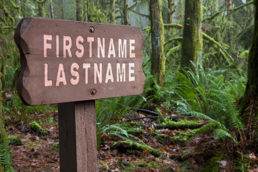 Feb - Forrest Sign