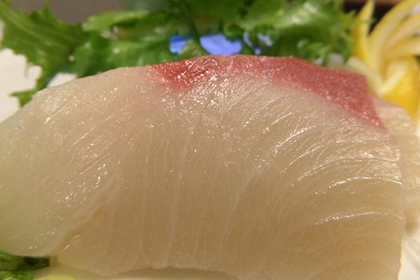 freshsushi3.png