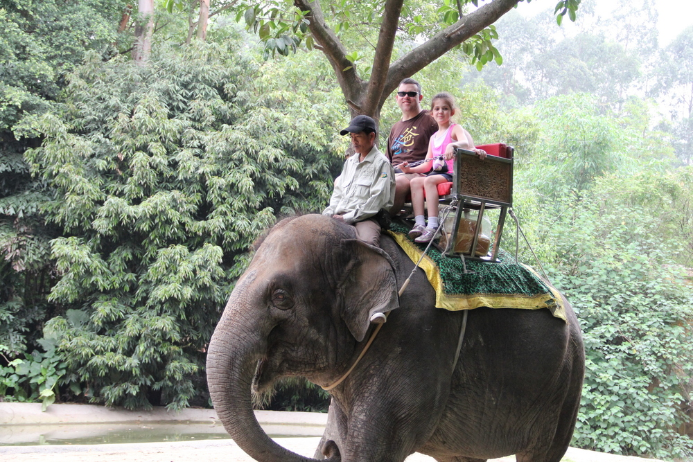 Abigail and Russ rode on an elephant!