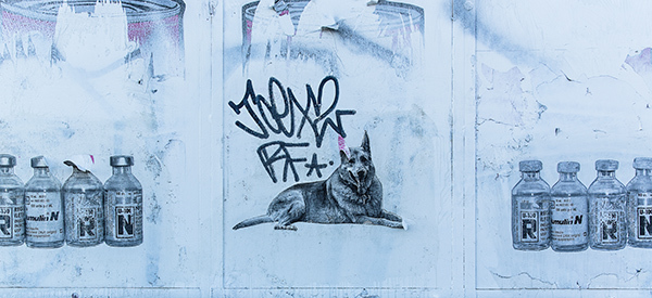 Graffiti-6436_web.jpg