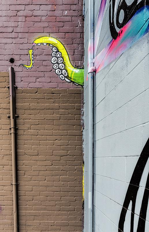 StreetArt-2493_web.jpg