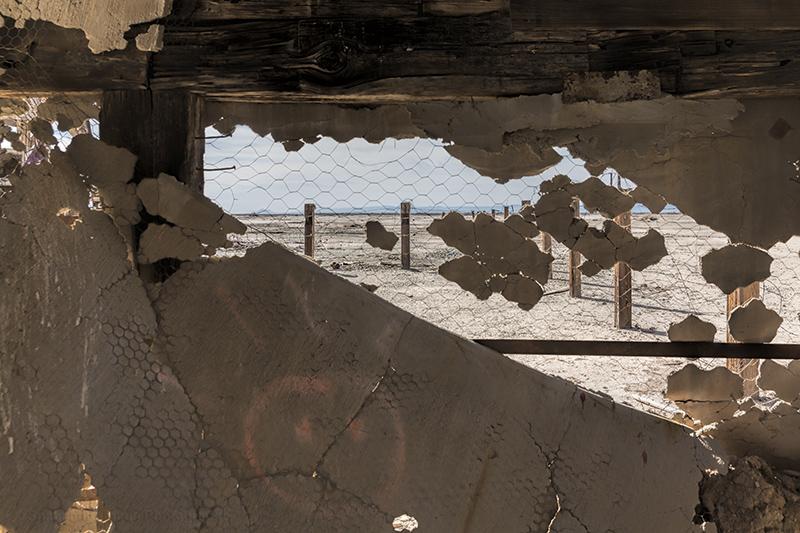 SaltonSea-0876_web.jpg