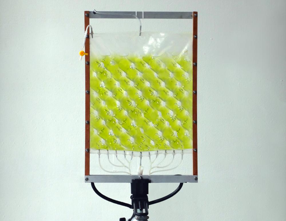 Prototype of Photobioreactor (BioR)
