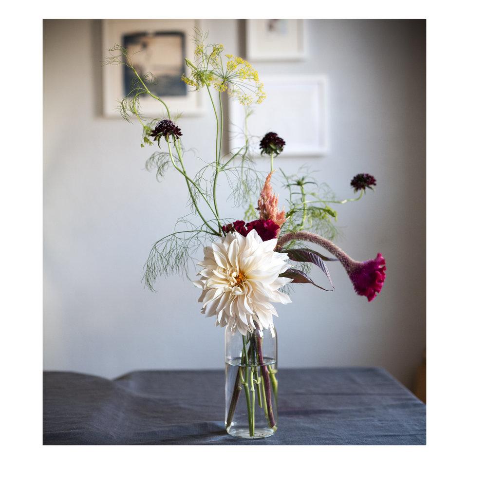 insta_floralshoot.jpg