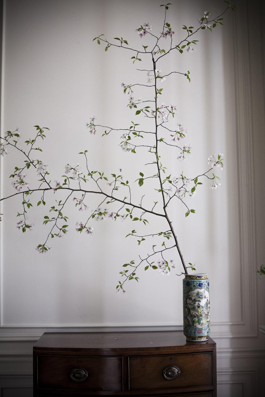 spring_13.jpg