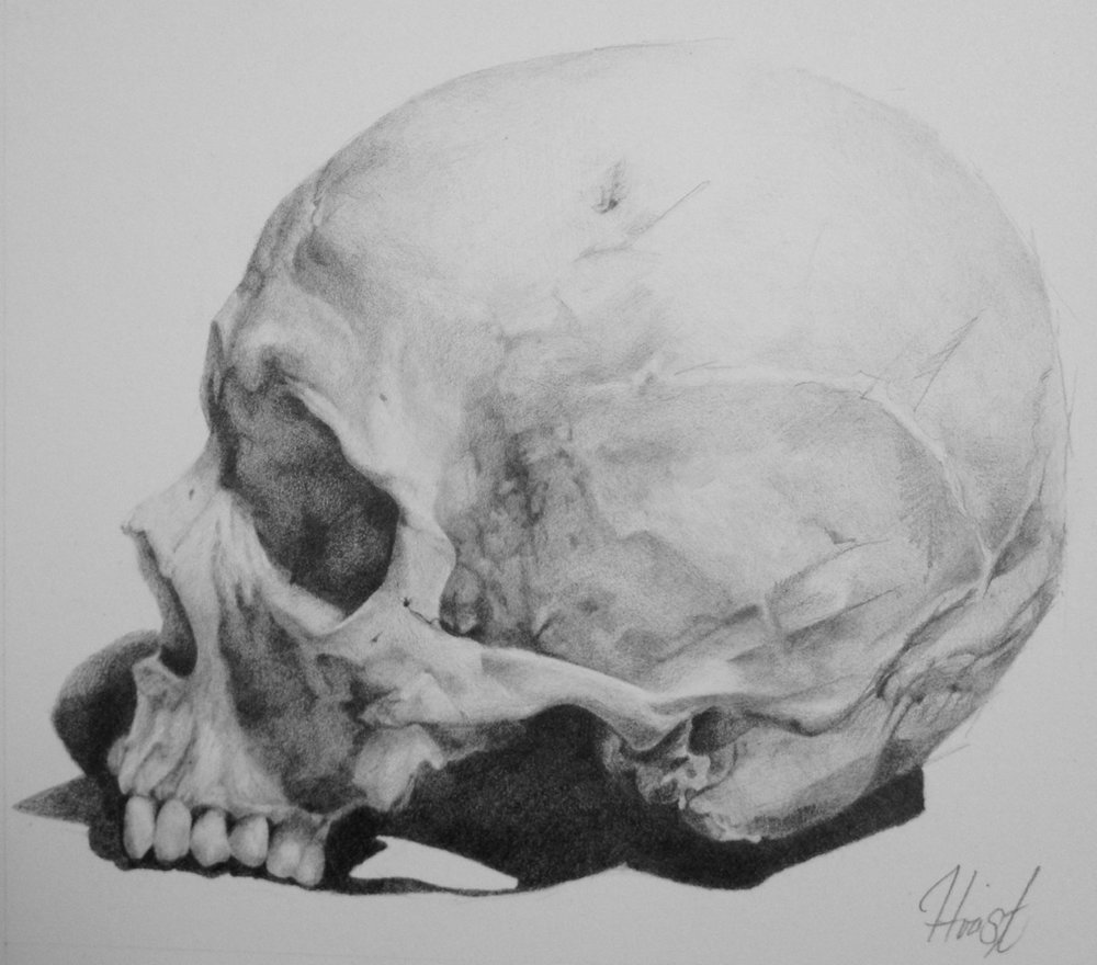 Skull1.jpeg
