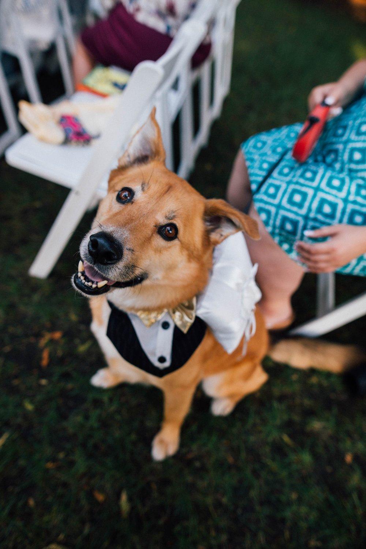 ashley_vos_seattle_ wedding_photographer_0191a.jpg