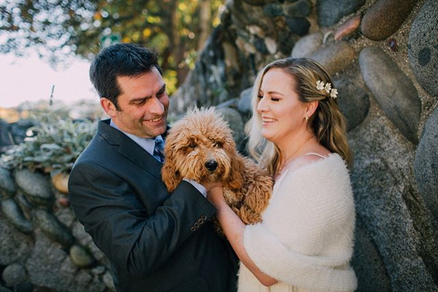 Doggies deserve wedding day love too. ⠀⠀⠀⠀⠀⠀⠀⠀⠀⠀⠀⠀⠀⠀⠀⠀⠀⠀⠀⠀⠀⠀⠀⠀⠀⠀⠀ ⠀⠀⠀⠀⠀⠀⠀⠀⠀⠀⠀⠀⠀⠀⠀⠀⠀⠀⠀⠀⠀⠀⠀⠀⠀⠀⠀⠀⠀⠀⠀⠀⠀⠀⠀⠀⠀⠀⠀⠀⠀⠀⠀⠀⠀⠀⠀⠀⠀⠀⠀⠀⠀⠀⠀⠀⠀⠀⠀⠀⠀⠀⠀⠀⠀⠀⠀⠀⠀⠀⠀⠀⠀⠀⠀⠀⠀⠀⠀⠀⠀⠀⠀⠀⠀⠀⠀⠀⠀⠀⠀⠀⠀⠀⠀⠀⠀⠀⠀⠀⠀⠀⠀⠀⠀⠀⠀⠀⠀⠀⠀⠀⠀⠀⠀⠀⠀⠀⠀⠀⠀⠀⠀⠀⠀⠀ #ashleyvosphotography#seattleweddingphotography#seattleweddingphotographer#seattleengagemet#seattleengagementphotographer#engagedinlove#engaged#weddingphotography#ballard#seattle#206#seattlecourthouse#elopement#courthouseweddings#seattlecourthousewedding#seattleelopement#PNWweddings#pnwweddingphotographer #groomsmen #groom #bridalparty