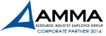 AMMA_CorporatePartnerLogo_2014_PMS_Pantone-287U.jpg
