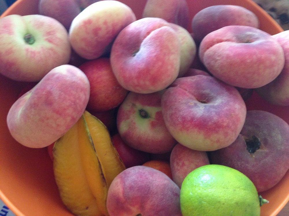 8_Fruit.JPG