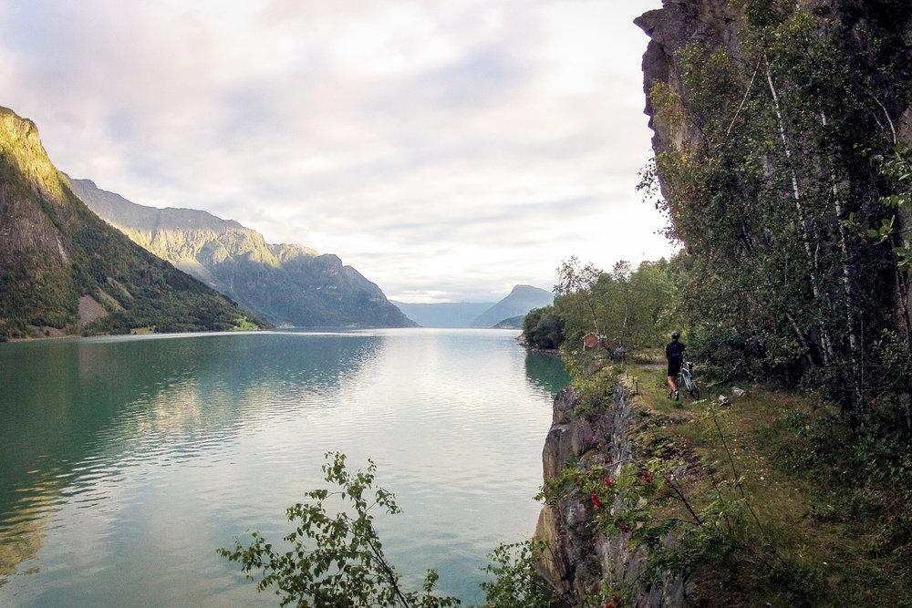 vegtur_lustrafjorden.jpg