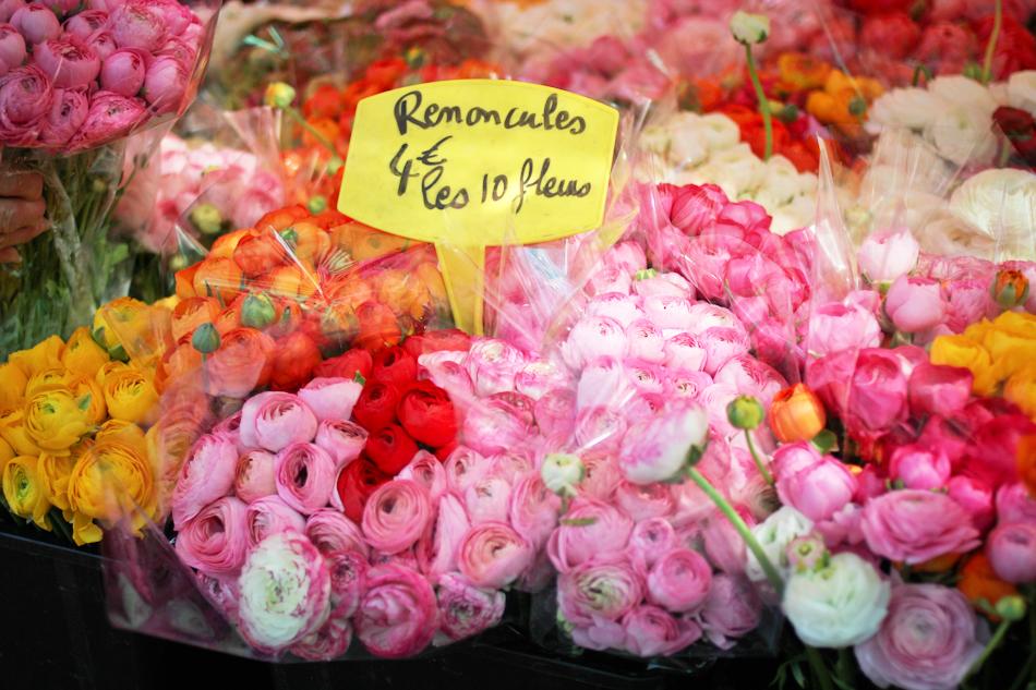 Nice, flower market
