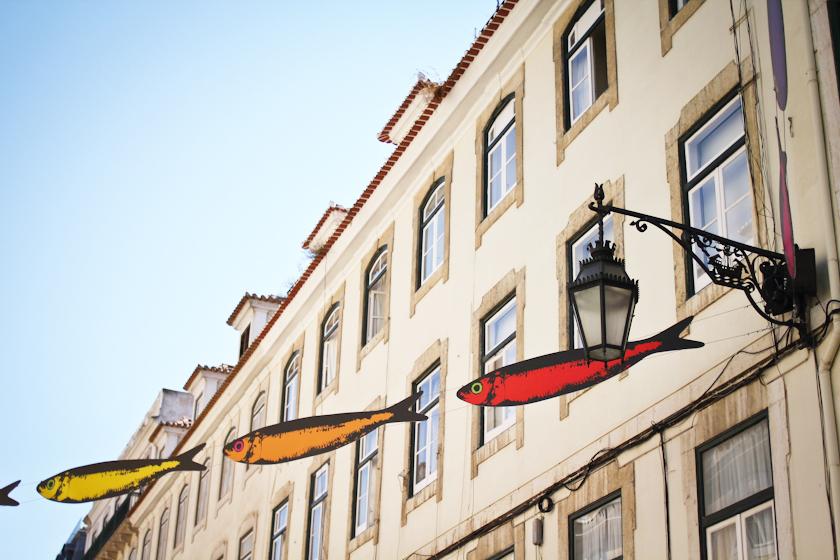 Sardines-in-Lisbon