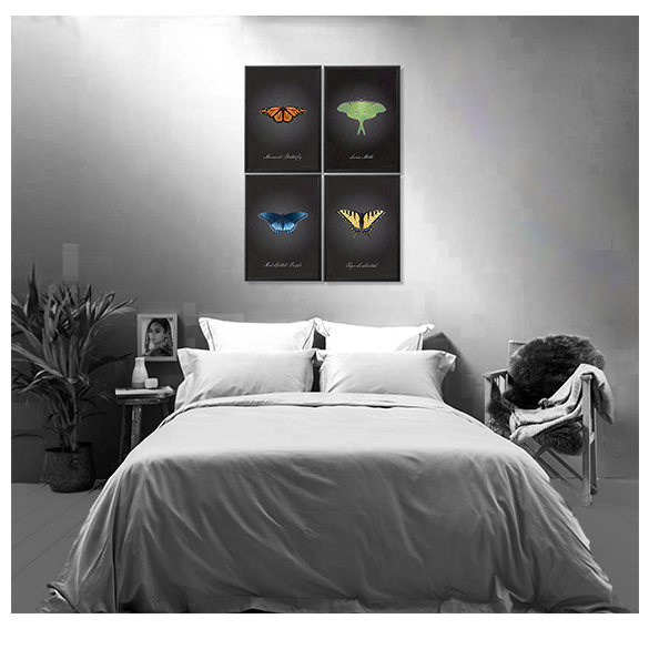 ShenefieldButterfliesBedroomInsta.jpg