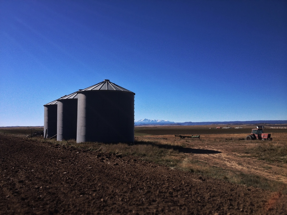 Cell phone reference shot of grain bins in one of Harold's fields. These things are addicting to shoot.