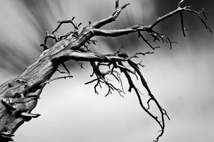 Deadwood 3.