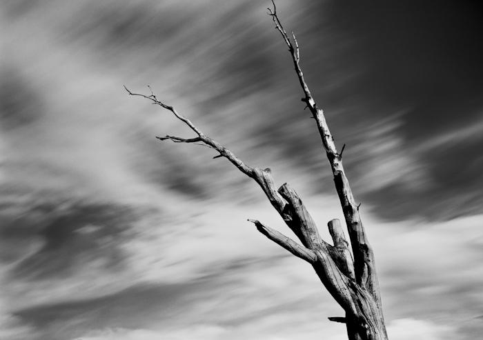Deadwood 2.