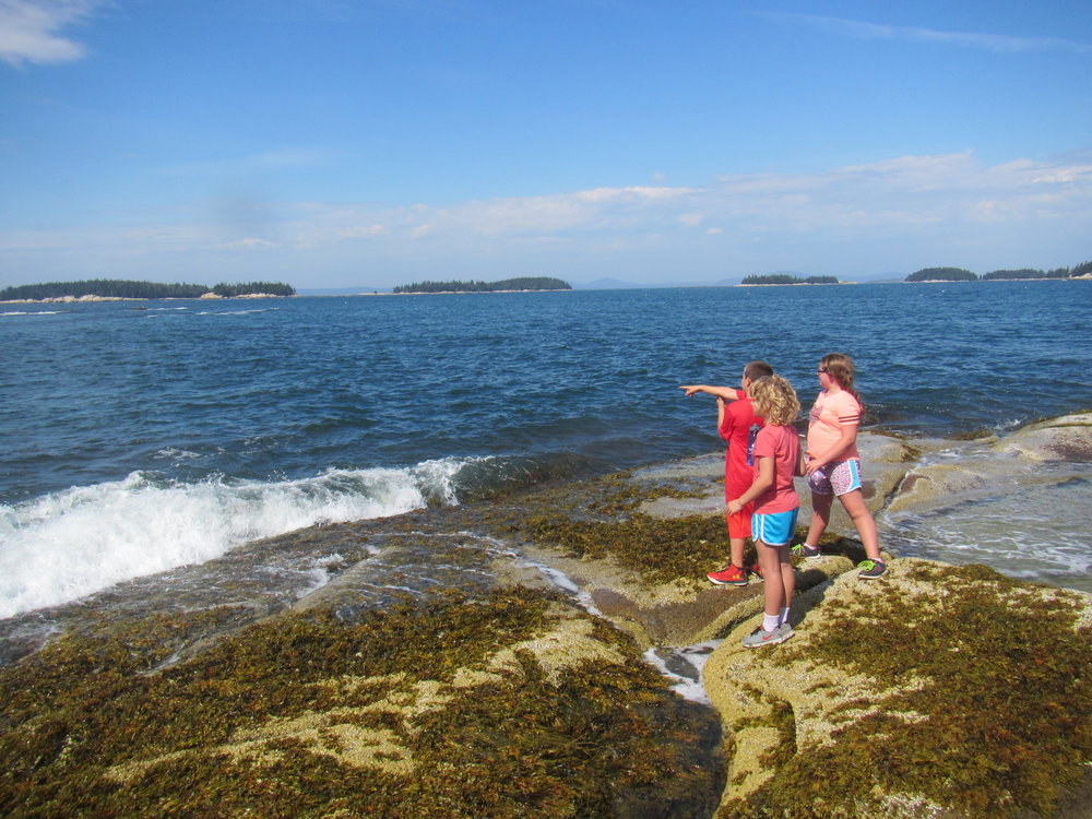 North end explorers take on Gibbon's Point