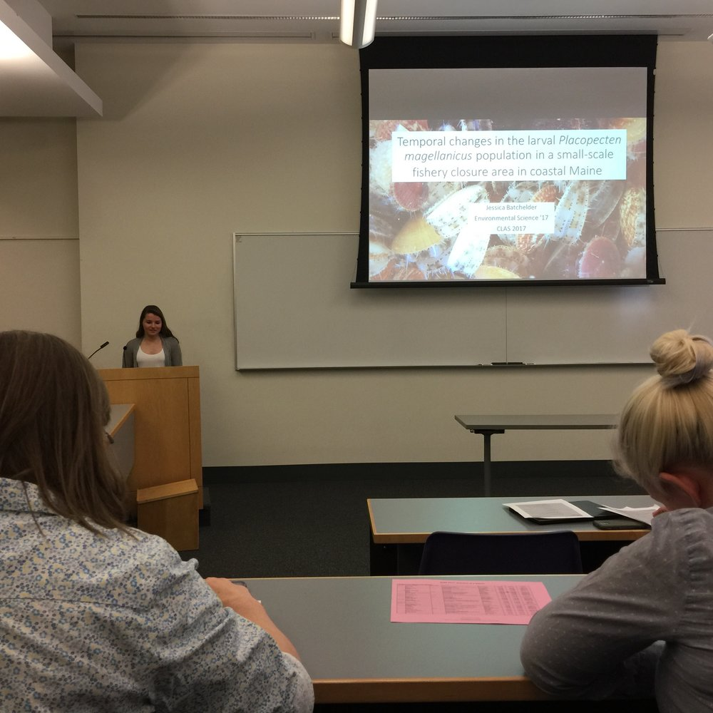 Presenting my thesis at the Colby Liberal Arts Symposium (CLAS)