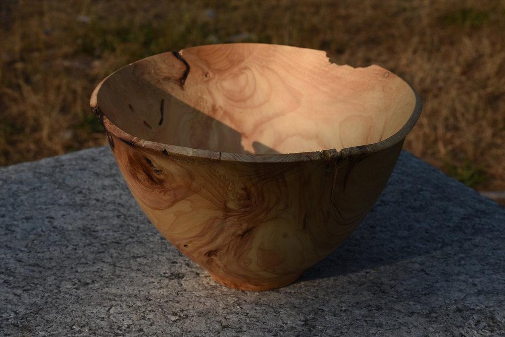 Hurricane Spruce: $800