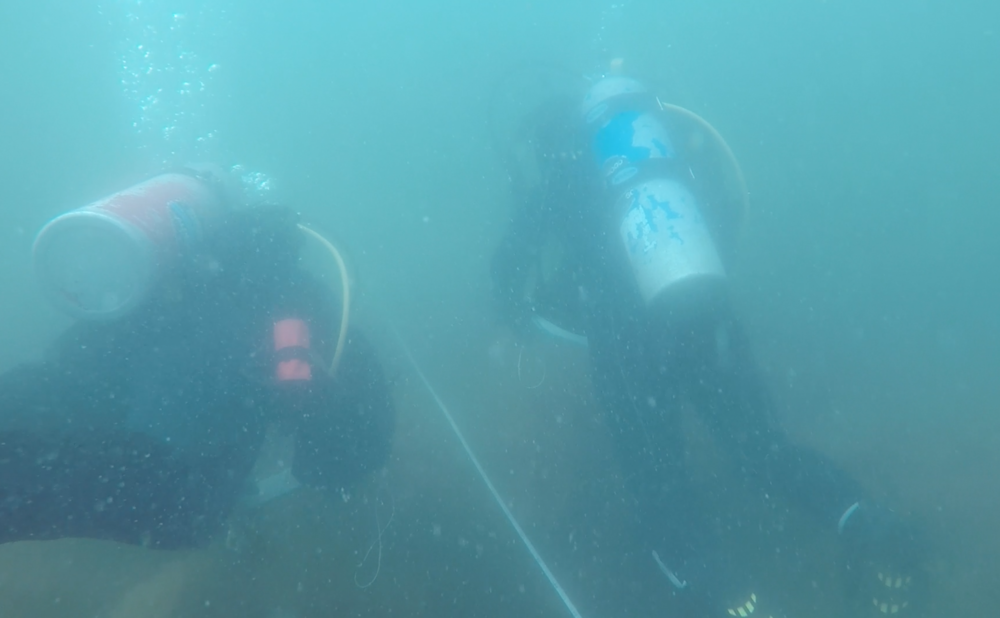 Bailey and I swimming along the transect while completing the swath protocol – a survey dedicated to looking at abundance of large invertebrates and demersal cryptic fish