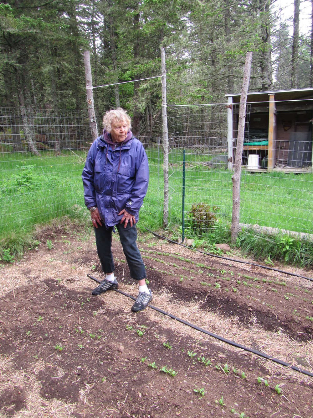 Ruth in the lead in the garden and outlasting us all...no one else makes sure our garden gets planted like Ruth does!