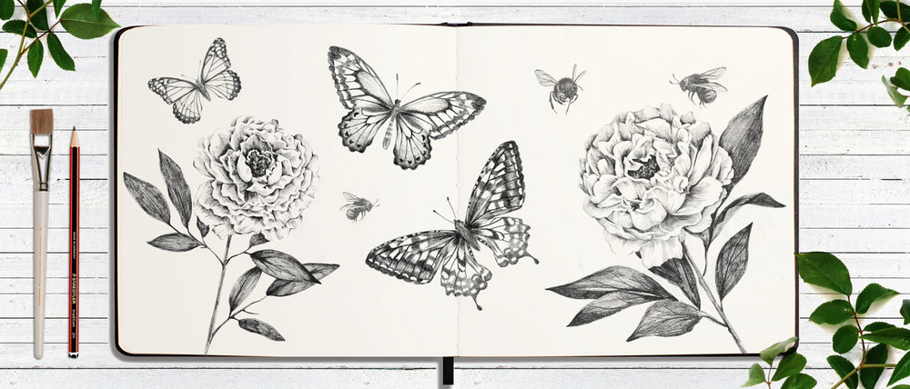 BUTTERFLIES-FLOWER-SKETCHBOOK.jpg